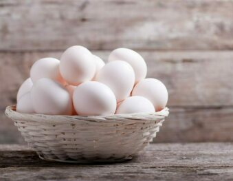 The eggs that you eat – Myths and facts